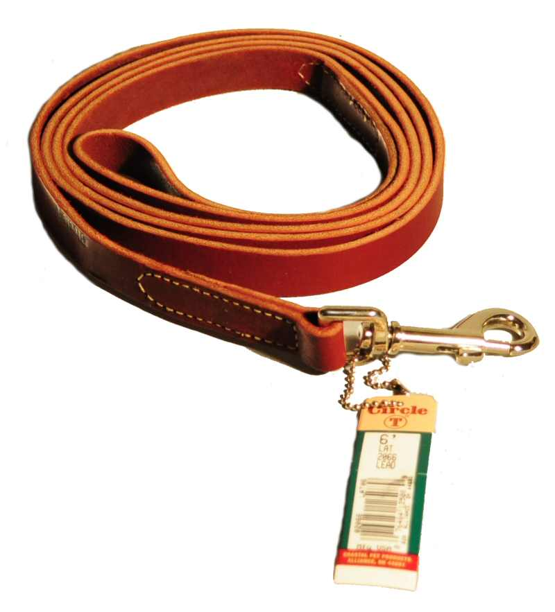 D-0776 Reflective Lead Green Bones XL 6' Leash